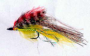 Der Yellow & Red Streamer von Michael