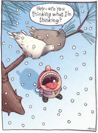 Leise rieselt nicht nur der Schnee.............